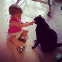 We're just going to pretend she's not sharing her food with the cat, okay?