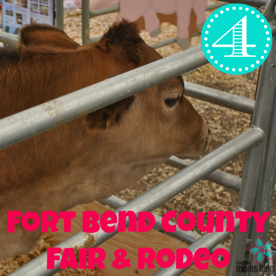Kelly - Fall Events - Ft Bend Co Fair