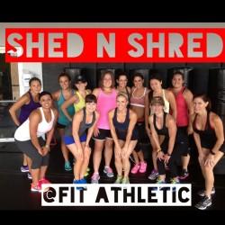 Shed 'n Shred