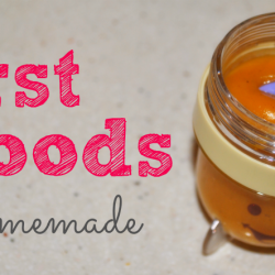 Homemade First Foods