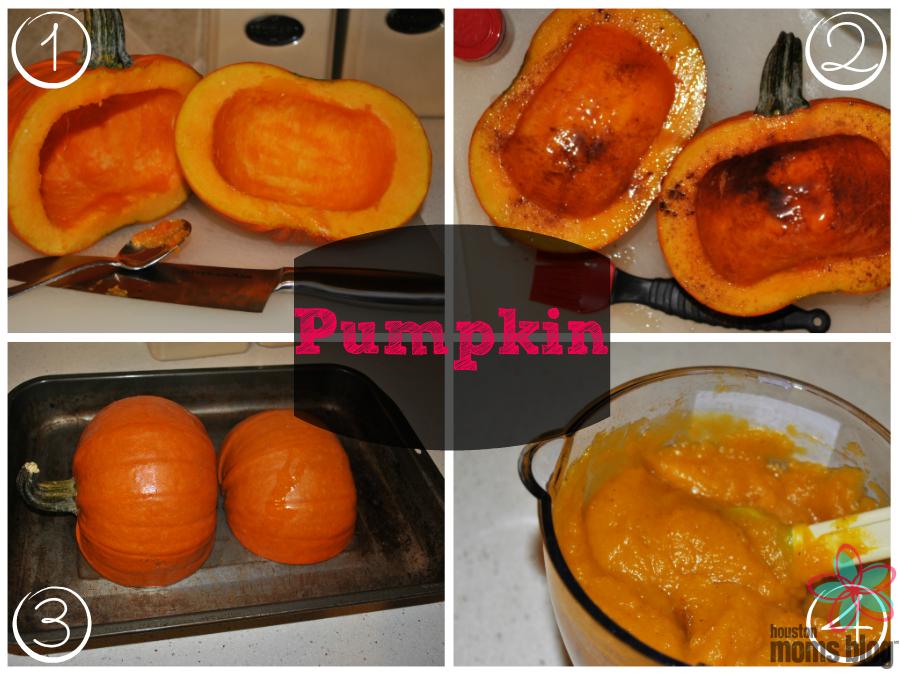 Homemade First Foods - Pumpkin
