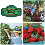 Blessington Farms {Giveaway}