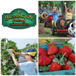 Blessington Farms {Giveaway}