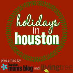 Holidays in Houston