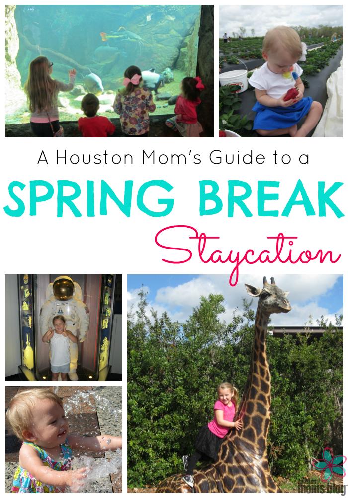 Houston Spring Break Staycation