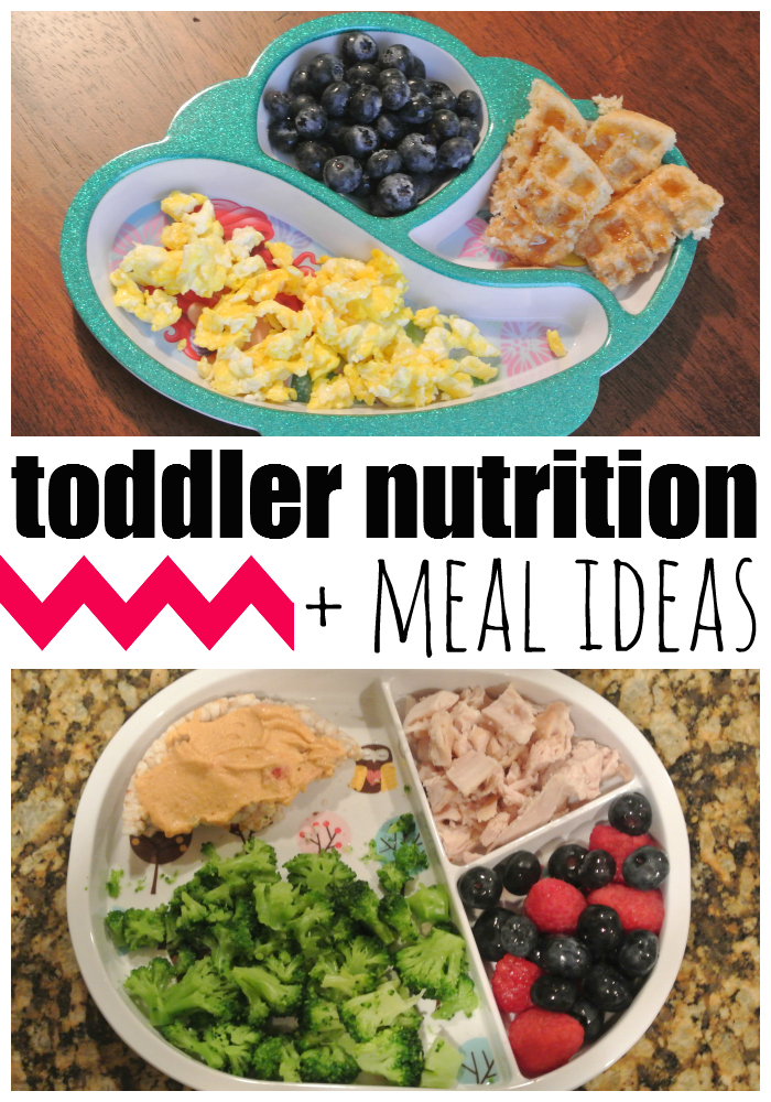 Toddler Nutrition and Meal Ideas c73nEQ2u