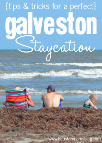 Galveston Staycation