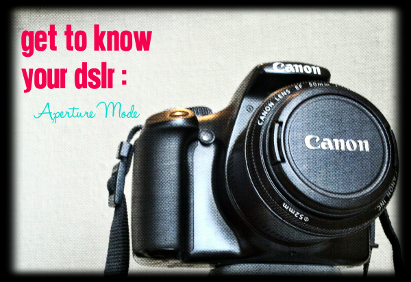 Get to know your DSLR aperture