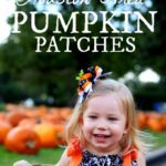 Guide to Houston Area Pumpkin Patches