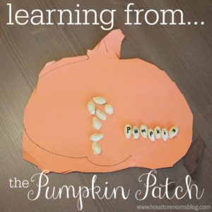 Learning From the Pumpkin Patch