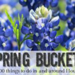 The Ultimate Houston Spring Bucket List