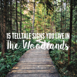 Telltale Signs You Live in The Woodlands