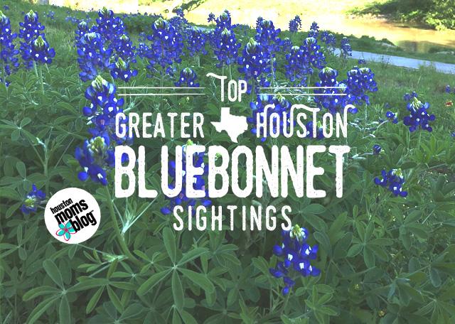 Top Greater Houston Bluebonnet Sightings | Houston Moms Blog