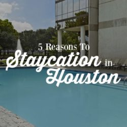 Reasons to Staycation in Houston