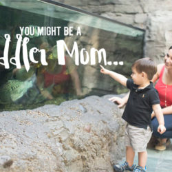 You Might Be a Toddler Mom If... | Houston Moms Blog