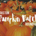 2016 Houston Pumpkin Patch Round-Up
