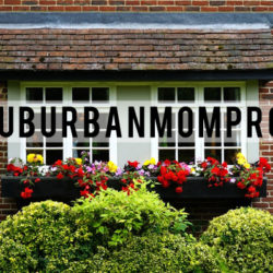 Suburban Mom Problems | Houston Moms Blog