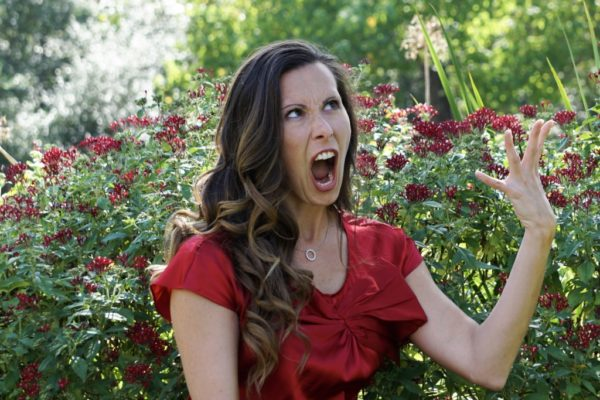 When Single Moms Melt Down   Houston Moms Blog