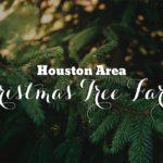 Houston Area Christmas Tree Farms