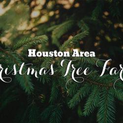 houston-area-christmas-tree-farms