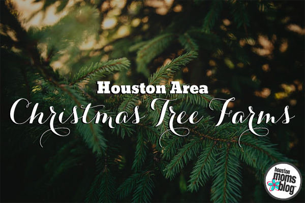 Houston Area Christmas Tree Farms | Houston Moms Blog