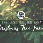 The Best Houston Area Christmas Tree Farms