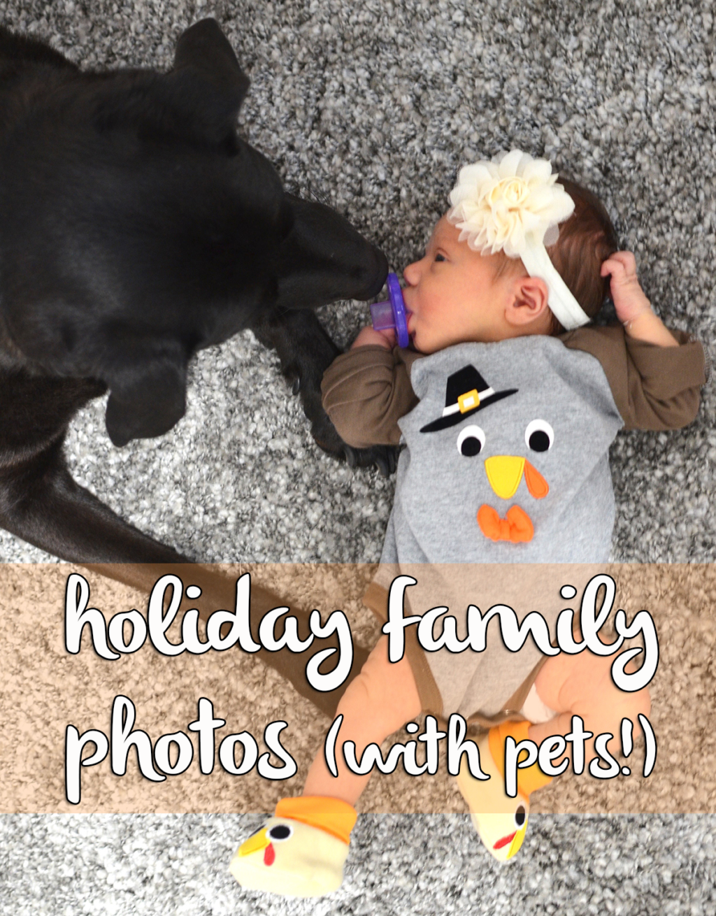 Holiday Family Photos with Pets | Houston Moms Blog
