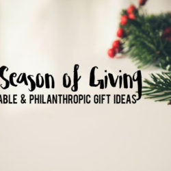 The Season of Giving :: Charitable & Philanthropic Holiday Gift Ideas | Houston Moms Blog