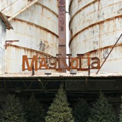 Magnolia Post Feature