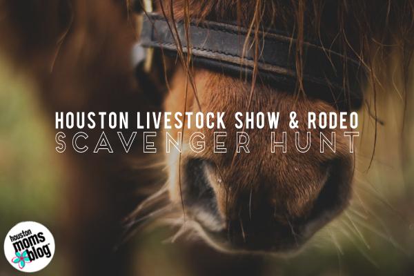 Houston Livestock Show & Rodeo :: SCAVENGER HUNT! | Houston Moms Blog