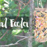 DIY Bird Feeder {Easy Earth Day Craft}