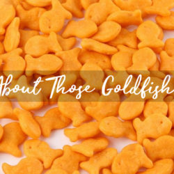 Goldfish Food Allergies