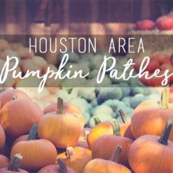 Houston Pumpkin Patches 2017