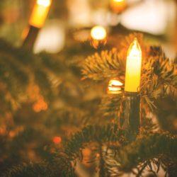 Saving Money and Energy This Holiday Season
