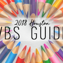 2018 VBS Guide 600x300