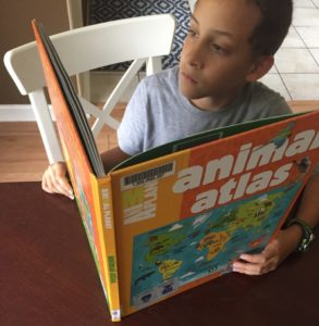 Boy reading a library book about animals.