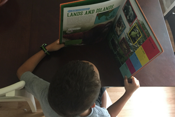 Get Your Kids Reading with These Children's Book Recommendations | Houston Moms Blog