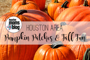 A Houston Moms Guide to 2018 Pumpkin Patches and Fall Festivals   Houston Moms Blog