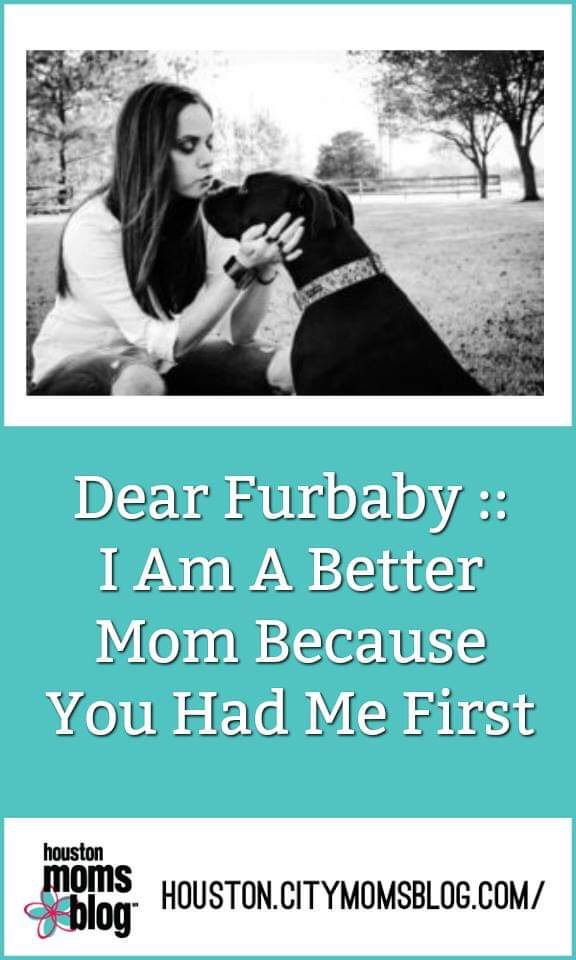 "Houston Moms Blog ""Dear Furbaby :: I Am A Better Mom Because You Had Me First"" #momsaroundhouston #houstonmomsblog"