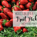 Houston Area Guide to Fruit Picking {Plus Free Produce Printable}