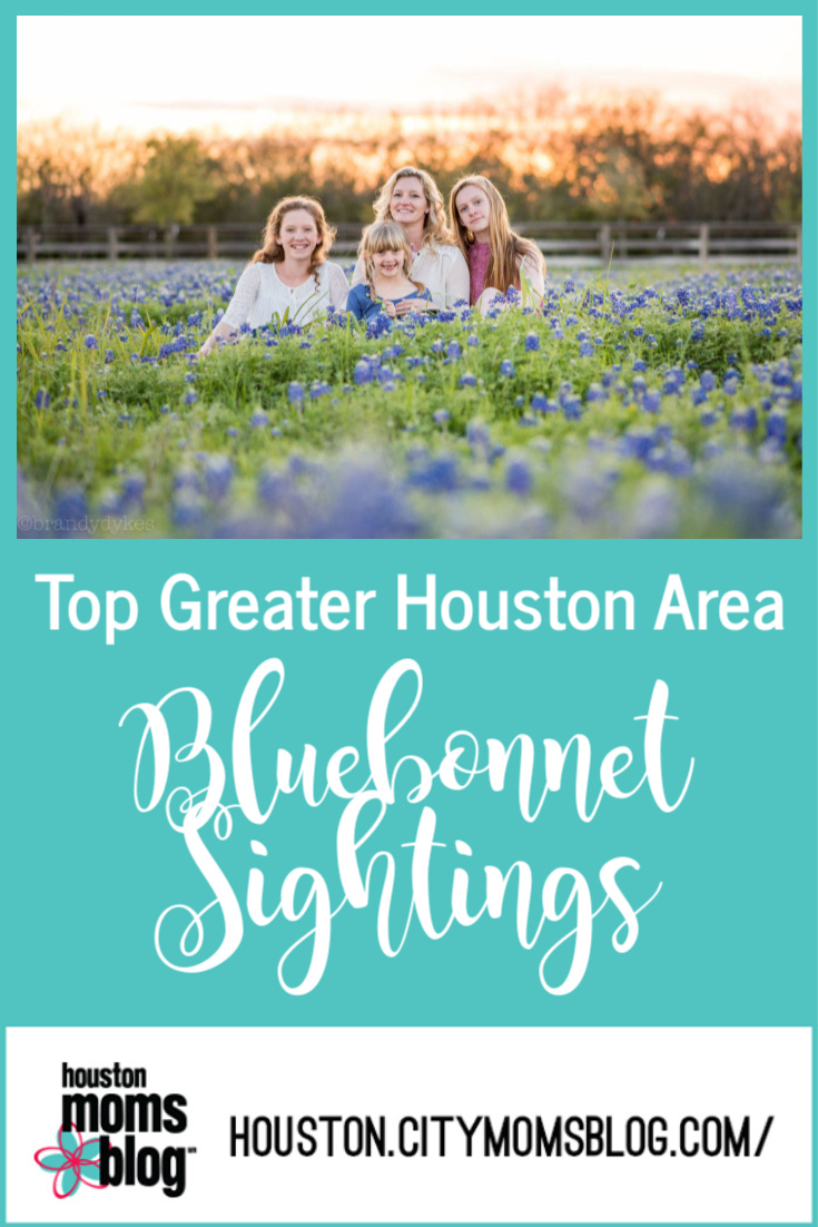 """Houston Moms Blog """"Top Greater Houston Area Bluebonnet Sightings"""" #momsaroundhouston #houstonmomsblog"""