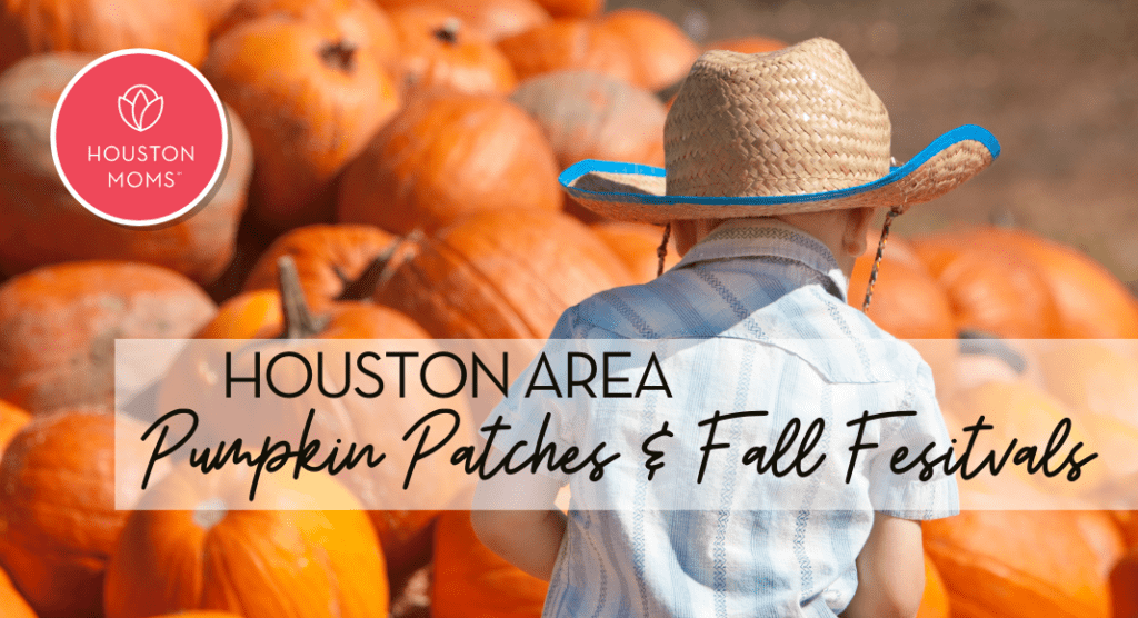 Houston Area Pumpkin Patches and Fall Festivals