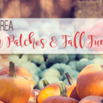 A Houston Moms Guide to 2019 Pumpkin Patches and Fall Festivals
