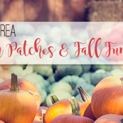 "Houston Moms Blog ""Houston Area Pumpkin Patches & Fall Fun"""