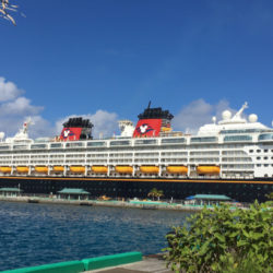 Disney Cruise Ship Feature