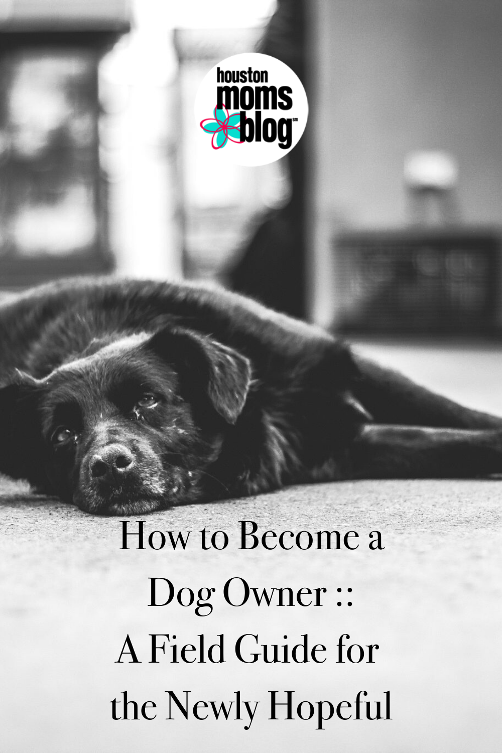 """Houston Moms Blog """"How to Become a Dog Owner:: A Field Guide for the Newly Hopeful"""" #houstonmomsblog #momsaroundhouston"""