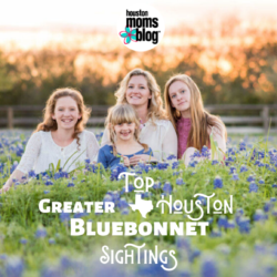 "Houston Moms ""Top Greater Houston Bluebonnet Sightings"" #houstonmomsblog #momsaroundhouston"
