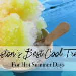 Houston's Best Cool Treats for Hot Summer Days