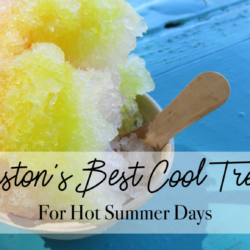 Houston's Best Cool Treats