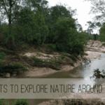 Best Spots to Explore Nature Around Houston